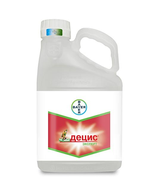 Инсектицид Децис: применение препарата от вредителей для растений на огороде и в саду